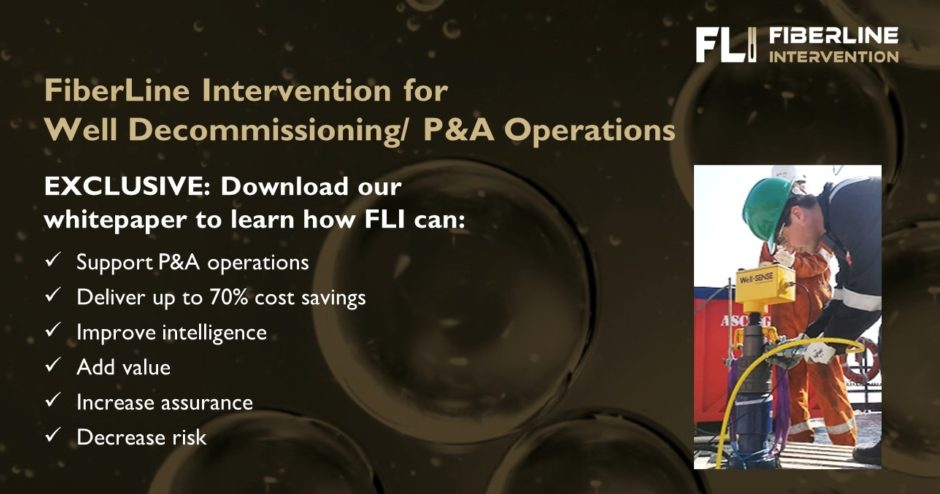 FiberLine Intervention for P&A planning and operations - part 3
